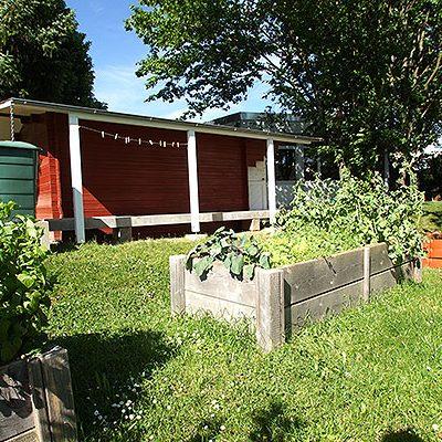 Gartenhauspflanzen